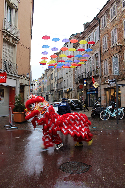 nouvel an chinois Mâcon 2018 (39).JPG
